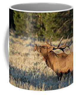 Coffee Mug featuring the photograph Bugling Elk by Ronnie and Frances Howard