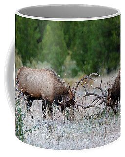 Coffee Mug featuring the photograph Bull Elk Battle Rocky Mountain National Park by Nathan Bush