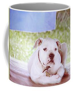 Bulldog Rana Art 80 Coffee Mug
