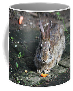 Coffee Mug featuring the photograph Bunny Wants A Carrot by Trina Ansel