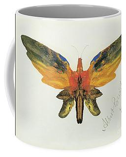 Decalcomania Coffee Mugs