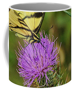 Butterfly On Bull Thistle Coffee Mug