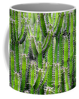 Cacti Wall Coffee Mug