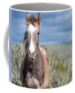 Coffee Mug featuring the photograph Cactus Cutie by Mary Hone