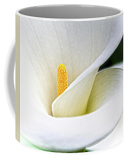 Cala Coffee Mug