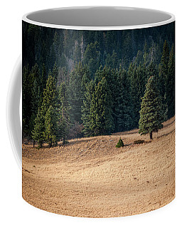 Caldera Edge Coffee Mug