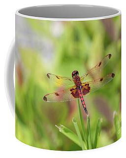 Calico Pennant Dragonfly Coffee Mug