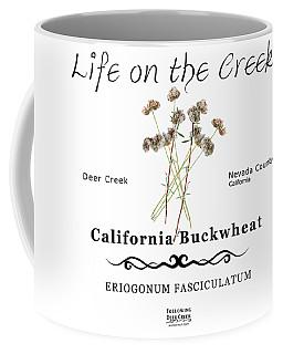 California Buckwheat Coffee Mug