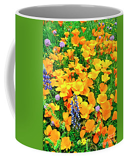 California Poppies And Betham Lupines Southern California Coffee Mug