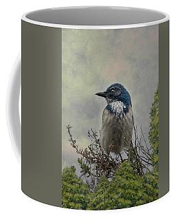 California Scrub Jay - Vertical Coffee Mug