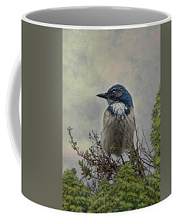 California Scrub Jay - Vertical Coffee Mug