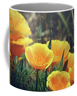 Californian Poppies In The Patagonia Coffee Mug