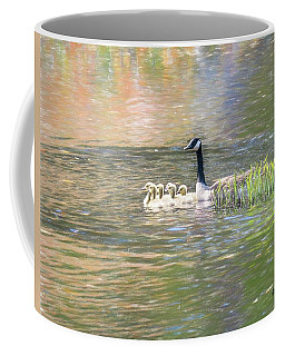Canada Goose And Six Goslings Swimming Together. Coffee Mug