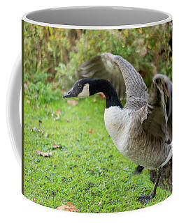 Coffee Mug featuring the photograph Canadian Goose With Wings Stretched by Scott Lyons