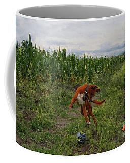 Canelo And The Watermelon Coffee Mug