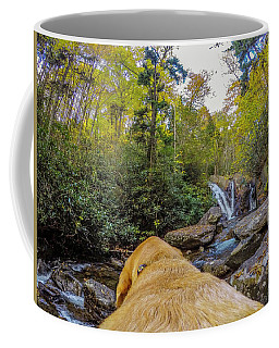 Coffee Mug featuring the photograph Canin Creek Falls by Matthew Irvin