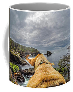 Coffee Mug featuring the photograph Cape Flattery By Photo Dog Jackson by Matthew Irvin