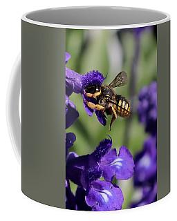 Carder Bee On Salvia Coffee Mug