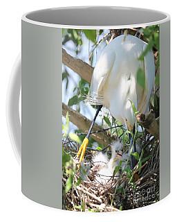 Careful Egret Mom With Chicks Coffee Mug