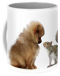 Careful I May Contain Nuts Coffee Mug