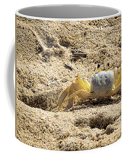 Coffee Mug featuring the photograph Carl The Crab by Lora J Wilson