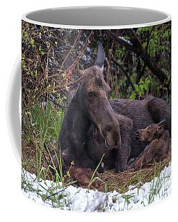 Casey's Gift  Coffee Mug