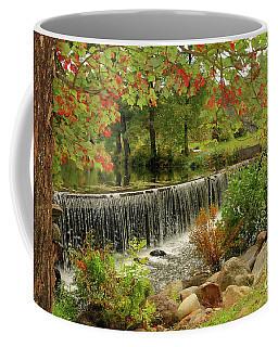 Coffee Mug featuring the photograph Cass Dam by Debbie Stahre