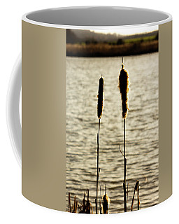 Cattails In The Sun Coffee Mug