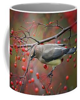 Coffee Mug featuring the photograph Cedar Waxwing 102206 by Rick Veldman
