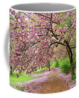 Central Park Cherry Blossoms Coffee Mug
