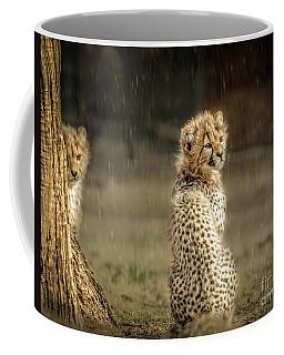 Cheetah Cubs And Rain 0168 Coffee Mug