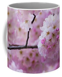 Cherry Blossom 8624 Coffee Mug