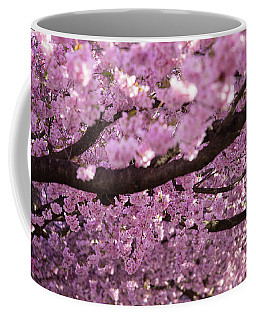 Cherry Blossom Tree Panorama Coffee Mug