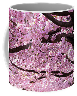 Cherry Blossom Trees Coffee Mug