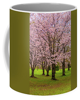Cherry Blossoms 2 Coffee Mug