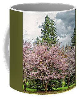 Cherry Blossoms 4 Coffee Mug