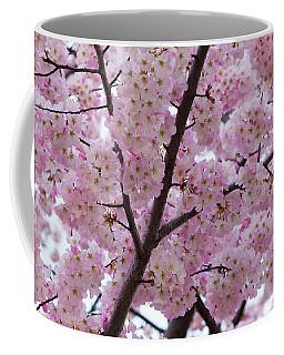 Cherry Blossoms 8611 Coffee Mug