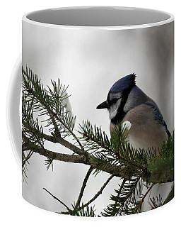 Chilly Jay Coffee Mug