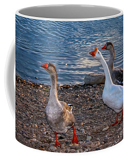 Chinese Geese Coffee Mug