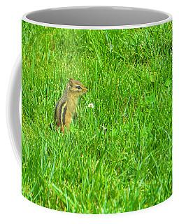 Chipmunk And The Flower Coffee Mug
