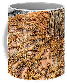 Coffee Mug featuring the photograph Cinderella's Gold Lace Pumpkin by Marianna Mills