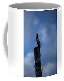 Cinematic Looking Anhinga Coffee Mug
