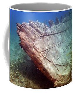 Coffee Mug featuring the photograph City Of Grand Rapids Shipwreck Ontario Canada 8081801c by Rick Veldman