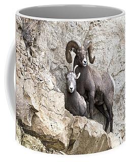 Cliff Notes Coffee Mug