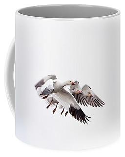 Close Quarter Flying Coffee Mug