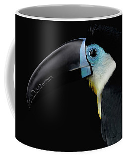 Close-up Channel-billed Toucan, Ramphastos Vitellinus, Isolated On Black Coffee Mug