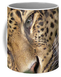 Close-up Coffee Mug