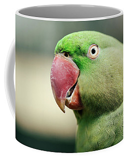 Close Up Of A King Parrot Coffee Mug