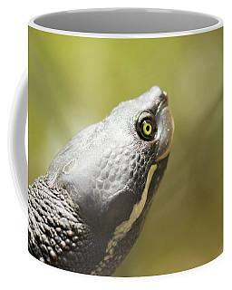 Close Up Of A Turtle. Coffee Mug