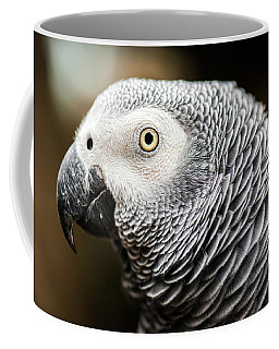Close Up Of An African Grey Parrot Coffee Mug